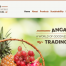 Food Importer Website
