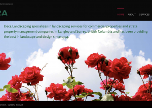 Website Landscaping Surrey